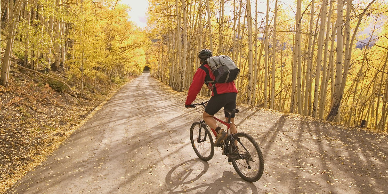 autumn leaves biking